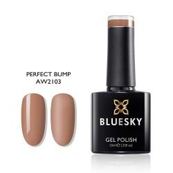 BLUESKY AW 2103 Perfect Bump